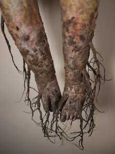 http://thinkspacegallery.com/2011/05/project/show/Ghost_Root_BG_5.jpg