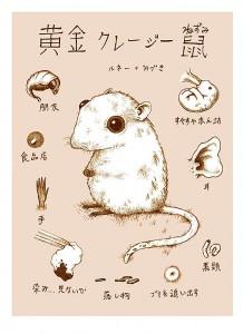 http://thinkspacegallery.com/2010/01/show/Renee-French---Golden-Crazy-Rat-(silkscreen-print).jpg