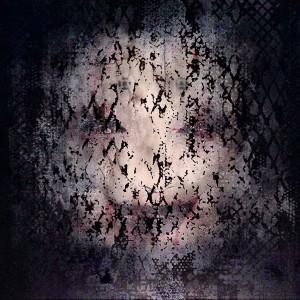 http://thinkspacegallery.com/2014/02/powwow/show/bask_awakening.jpg