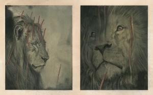 http://thinkspacegallery.com/2011/11/show/lions_studies.jpg