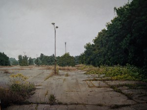 http://thinkspacegallery.com/2011/10/beyondeden/show/Detroit-City-Airport-Parking-Lot---48x36---1800.jpg