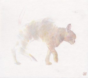 http://thinkspacegallery.com/2010/01/show/Edwin-Ushiro_Study-for-He-Still-Breathe-Through-Everything-I-See.jpg