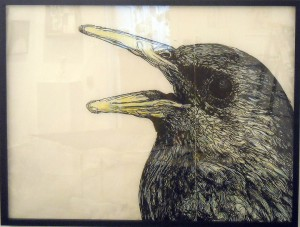 http://thinkspacegallery.com/2010/01/show/Gaia---Starling-(please-replace-current-image).jpg