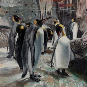 http://thinkspacegallery.com/2010/01/show/Heiko-Mueller---the_penguins.jpg