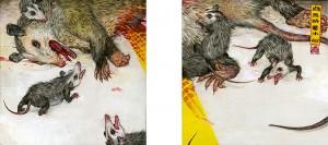 http://thinkspacegallery.com/2013/10/wildatheart/show/Mu-Pan_opossum.jpg