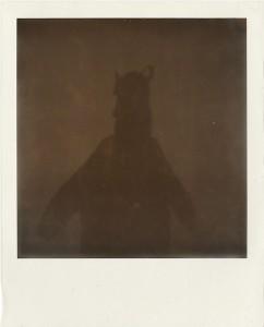 http://thinkspacegallery.com/2014/02/show/PolaroidXXII.jpg