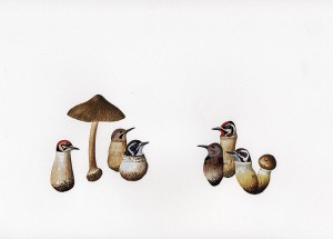 http://thinkspacegallery.com/2008/project/API/show/amyross_woodpeckershrooms3.jpg